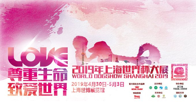 2019上海世界杯犬展,你我同是追梦人