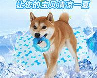 eetoys宜特狗爪甜甜圈 帮助狗狗散