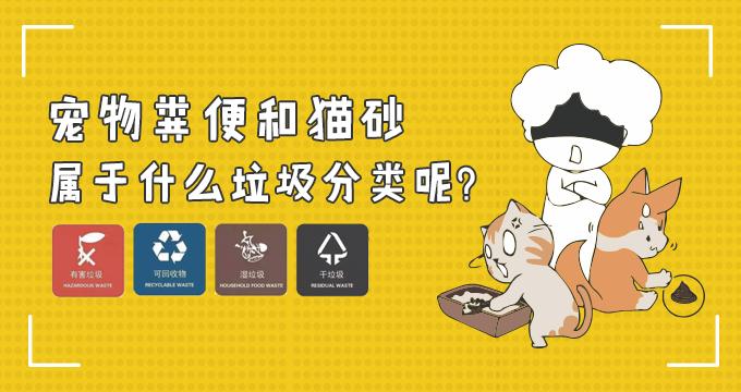 宠物粪便和猫砂属于什么垃圾分类呢?