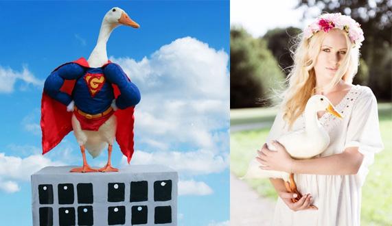 荷兰20岁美女为爱宠鸭Guus拍摄超萌造型图走红