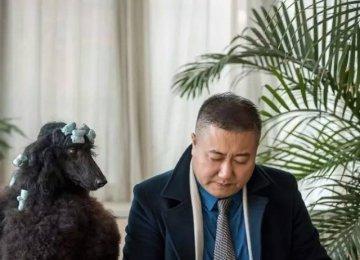 2017路斯大讲堂丨高源老师教你,提升宠物美容技术的正确方法!
