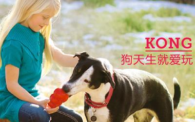 KONG,宠物玩具