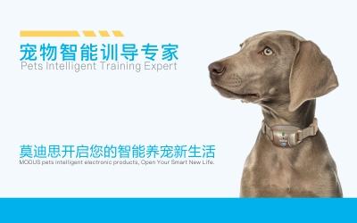 莫迪思,宠物智能,户外用品