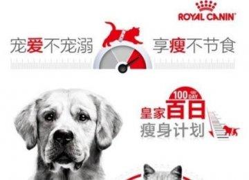 """皇家宠物食品发起全国首个""""百日瘦身计划"""""""
