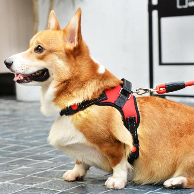 中小型狗链子胸背带项圈遛狗绳【送,可买得用户专享3元天猫优惠卷,