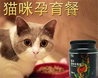 EVSCO医仕高猫咪孕育餐,孕前孕中