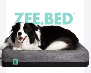 """""""潮牌""""定位的Zee Dog 7年业绩连"""