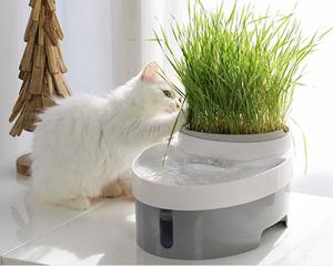 派旺宠物饮水器 自动循环猫用饮水
