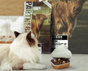 帕特诺尔全价成年期猫粮