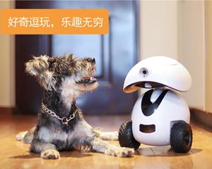 多尼斯宠物陪伴智能机