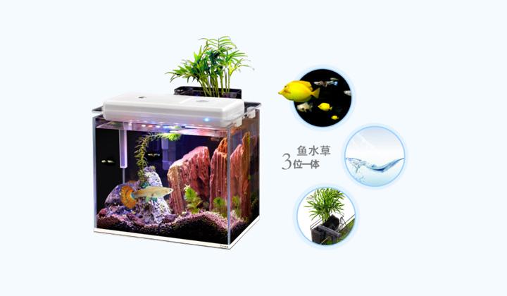 智能水族鱼缸