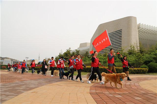 2019青岛宠物展狗狗游行活动旨在宣传文明养犬