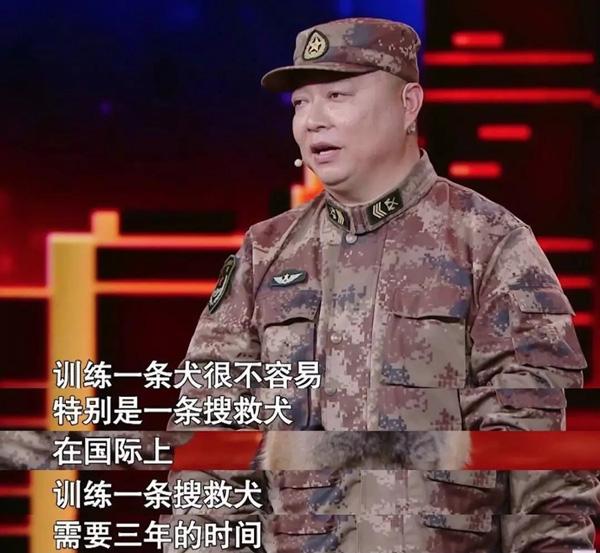 4.28国际搜救犬日|纪念穿梭在废墟之中的中国英雄