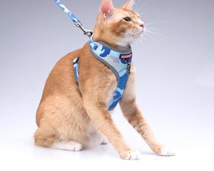 多尼斯小狗小猫牵引套装 遛狗猫防