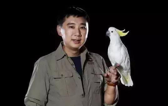 调良:中国宠物行为与正向训练第一