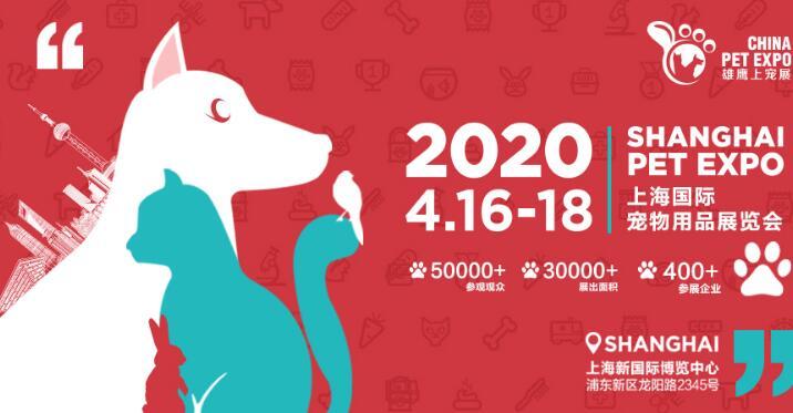 2020上海新国际博览中心举办雄鹰上